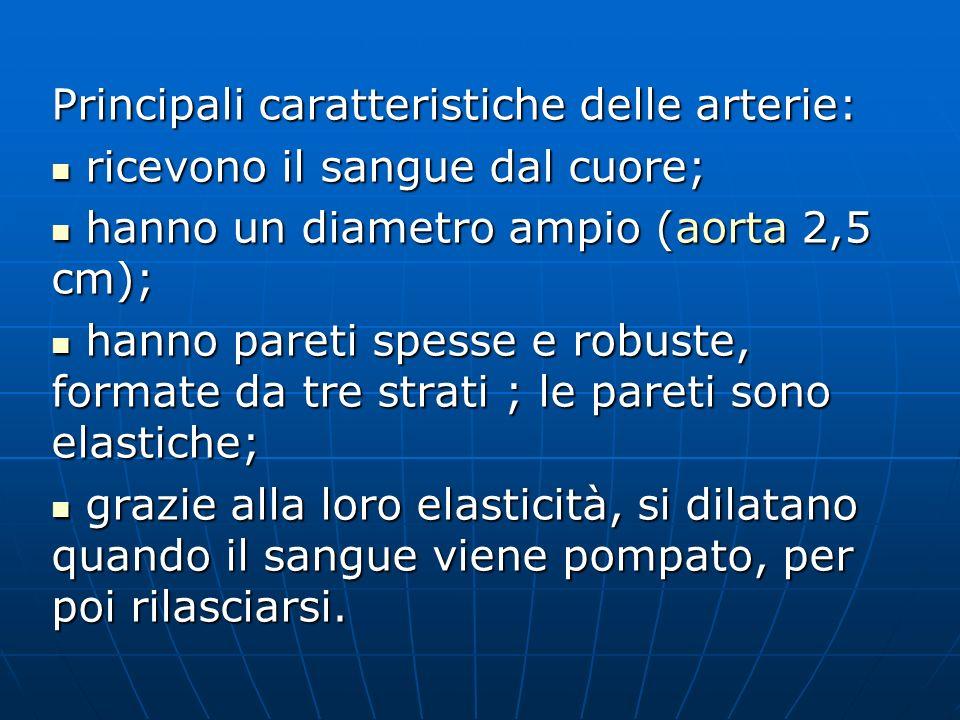 Principali caratteristiche delle arterie: