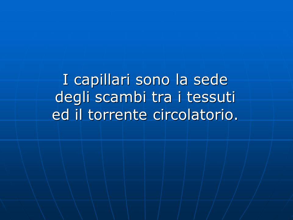 I capillari sono la sede degli scambi tra i tessuti ed il torrente circolatorio.
