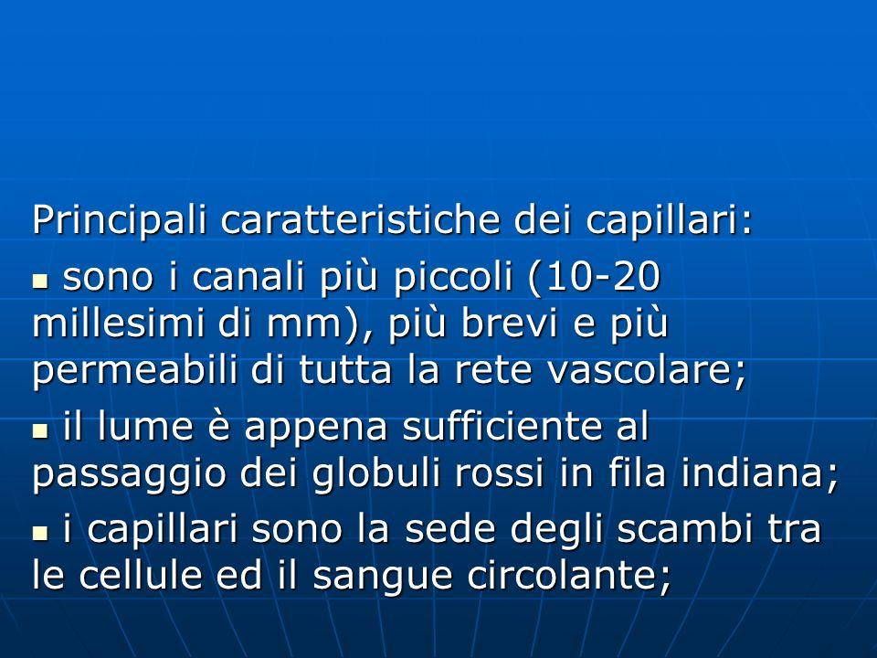 Principali caratteristiche dei capillari: