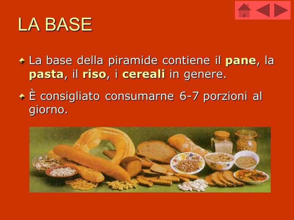 LA BASE La base della piramide contiene il pane, la pasta, il riso, i cereali in genere.