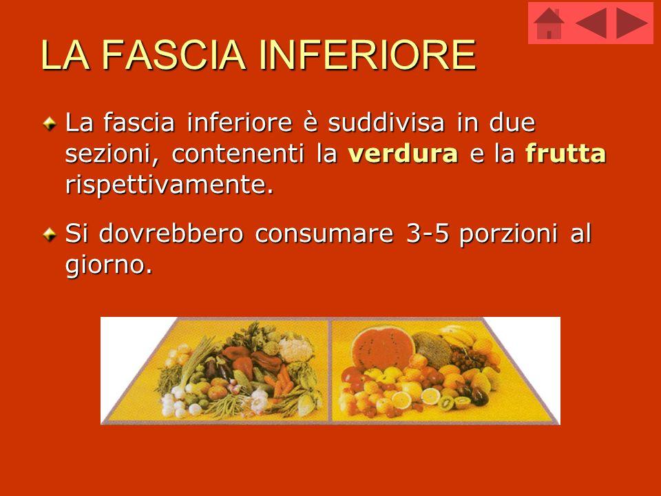 LA FASCIA INFERIORE La fascia inferiore è suddivisa in due sezioni, contenenti la verdura e la frutta rispettivamente.