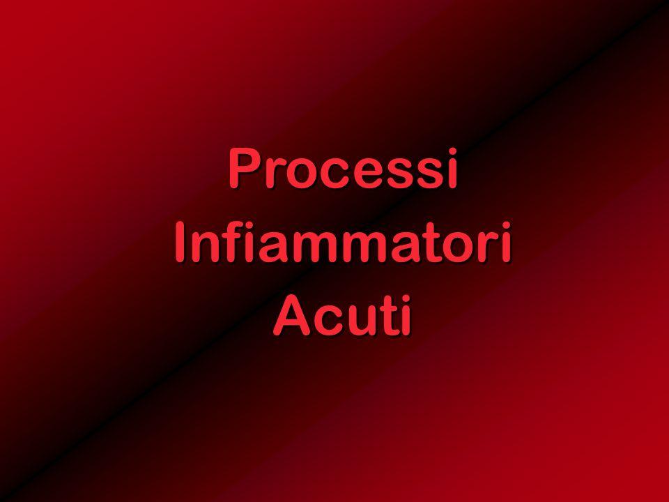 Processi Infiammatori Acuti