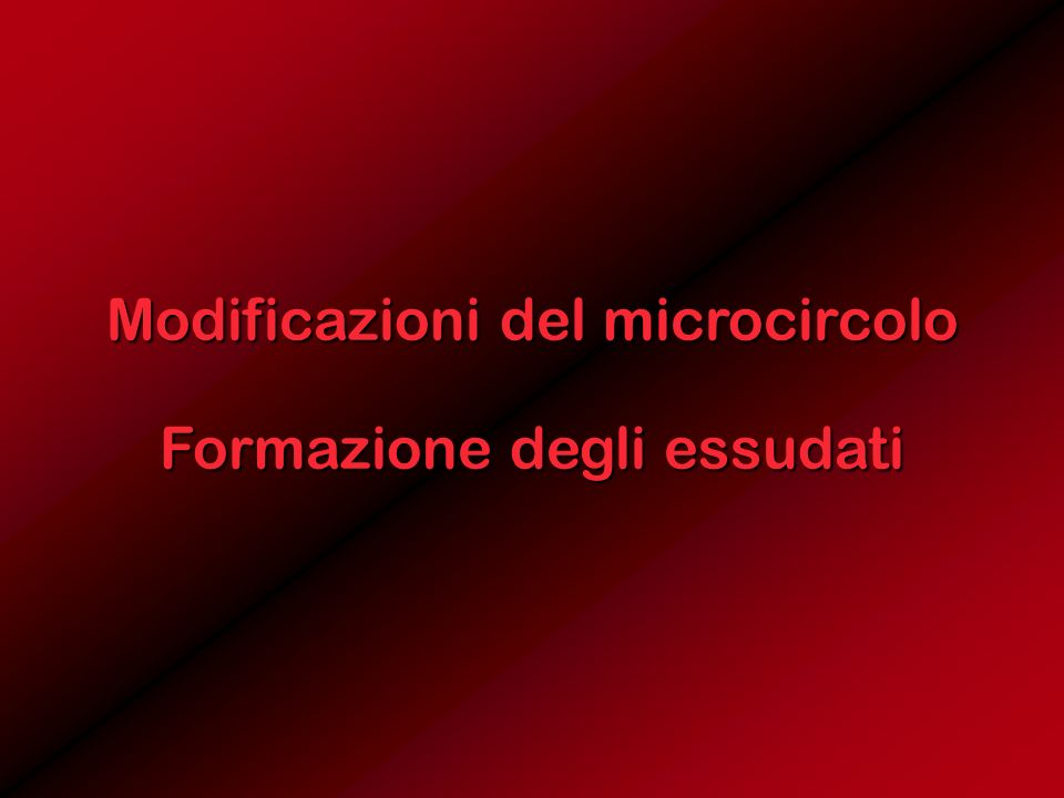 Modificazioni del microcircolo Formazione degli essudati