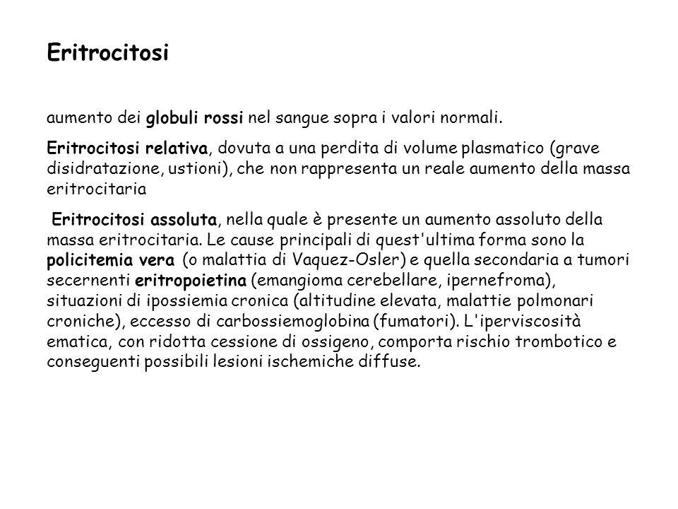 Eritrocitosi aumento dei globuli rossi nel sangue sopra i valori normali.