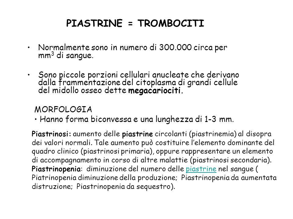 PIASTRINE = TROMBOCITI