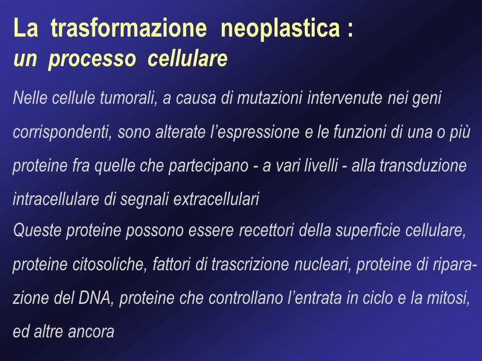 La trasformazione neoplastica :