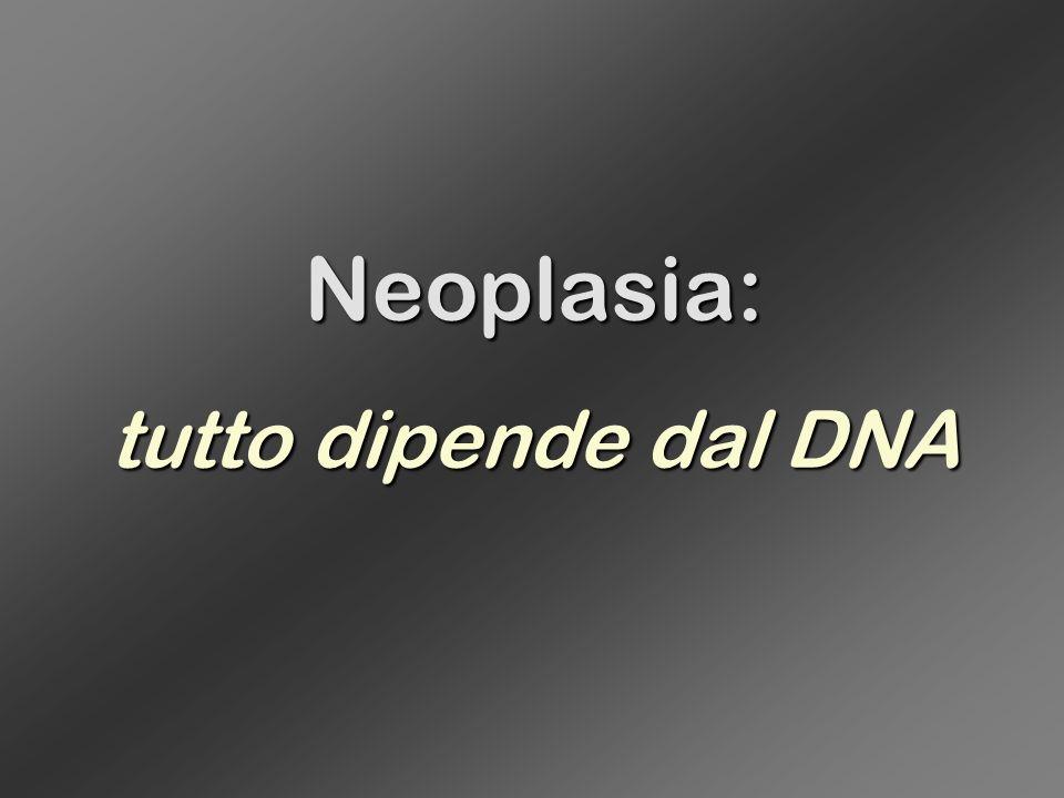 Neoplasia: tutto dipende dal DNA