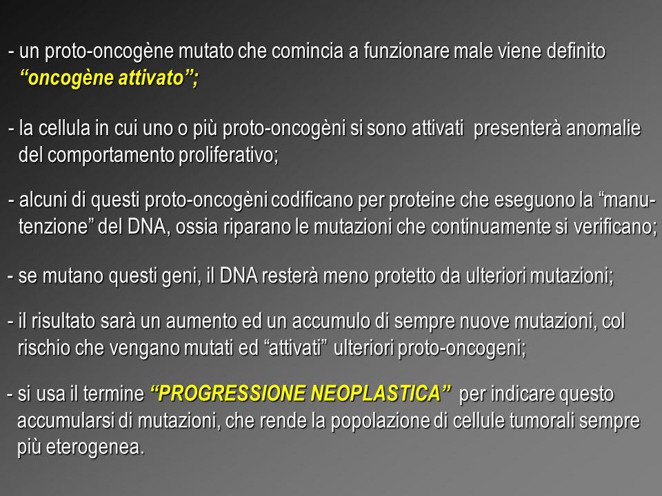 un proto-oncogène mutato che comincia a funzionare male viene definito