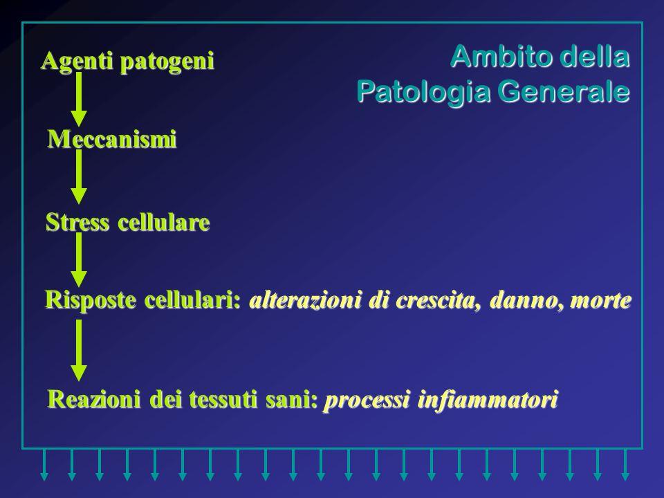 Ambito della Patologia Generale Agenti patogeni Meccanismi