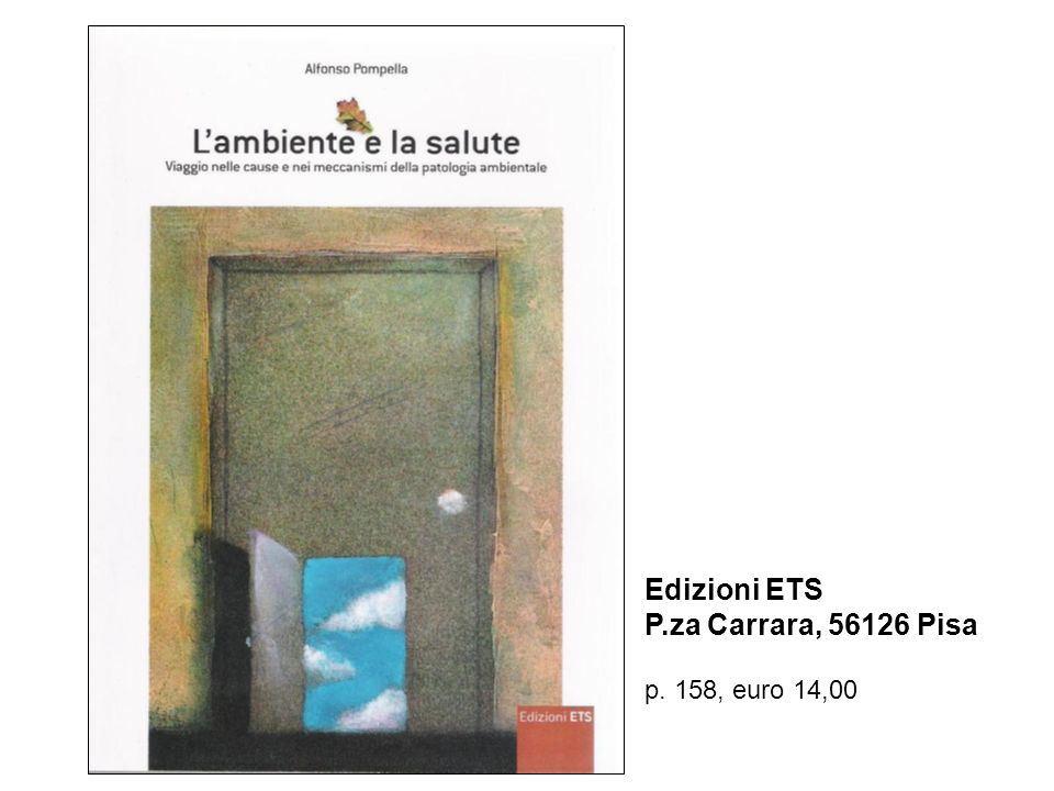 Edizioni ETS P.za Carrara, 56126 Pisa p. 158, euro 14,00