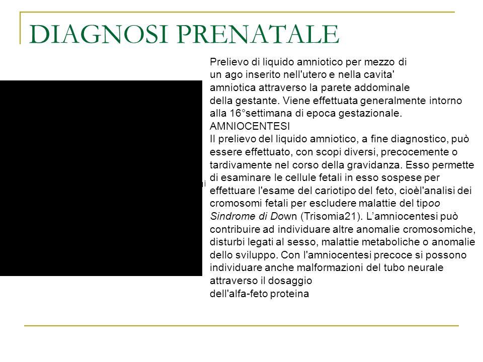 DIAGNOSI PRENATALE Prelievo di liquido amniotico per mezzo di