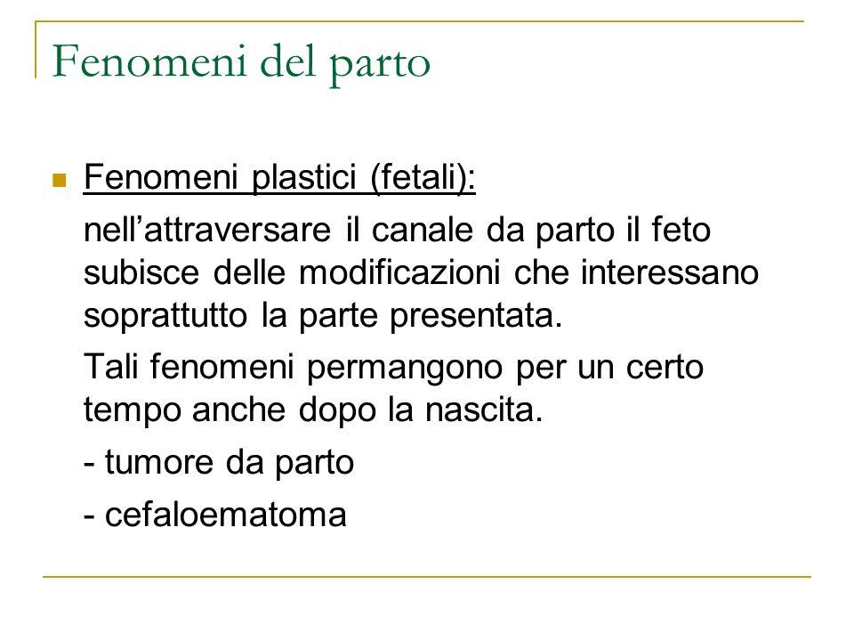 Fenomeni del parto Fenomeni plastici (fetali):