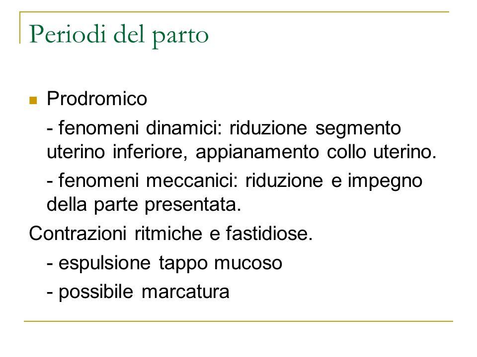 Periodi del parto Prodromico