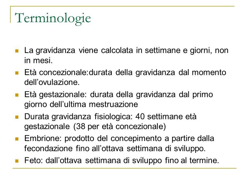 Terminologie La gravidanza viene calcolata in settimane e giorni, non in mesi.