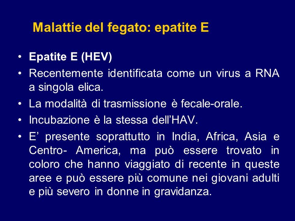 Malattie del fegato: epatite E