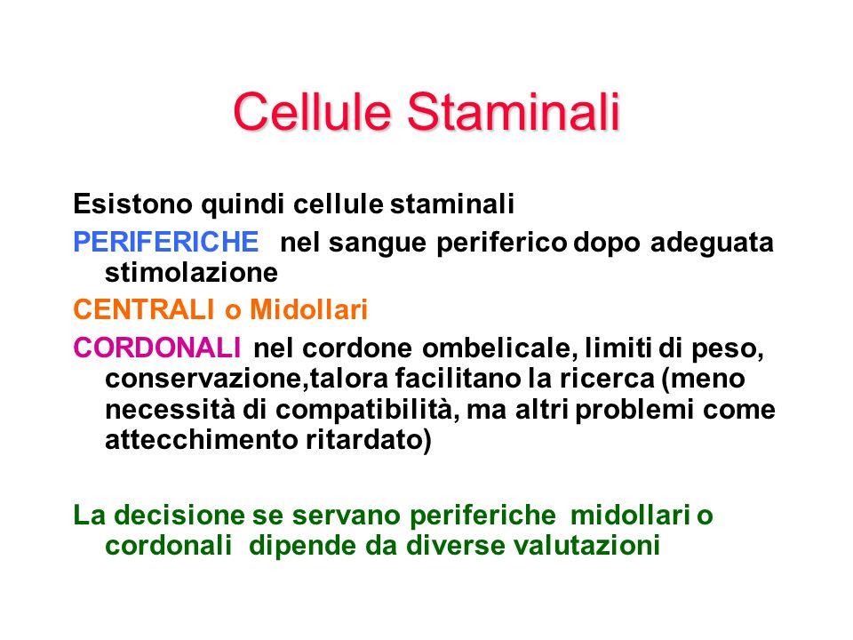 Cellule Staminali Esistono quindi cellule staminali