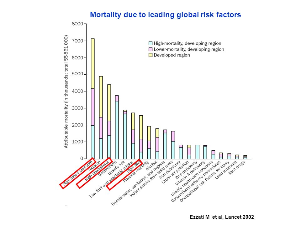 Mortality due to leading global risk factors