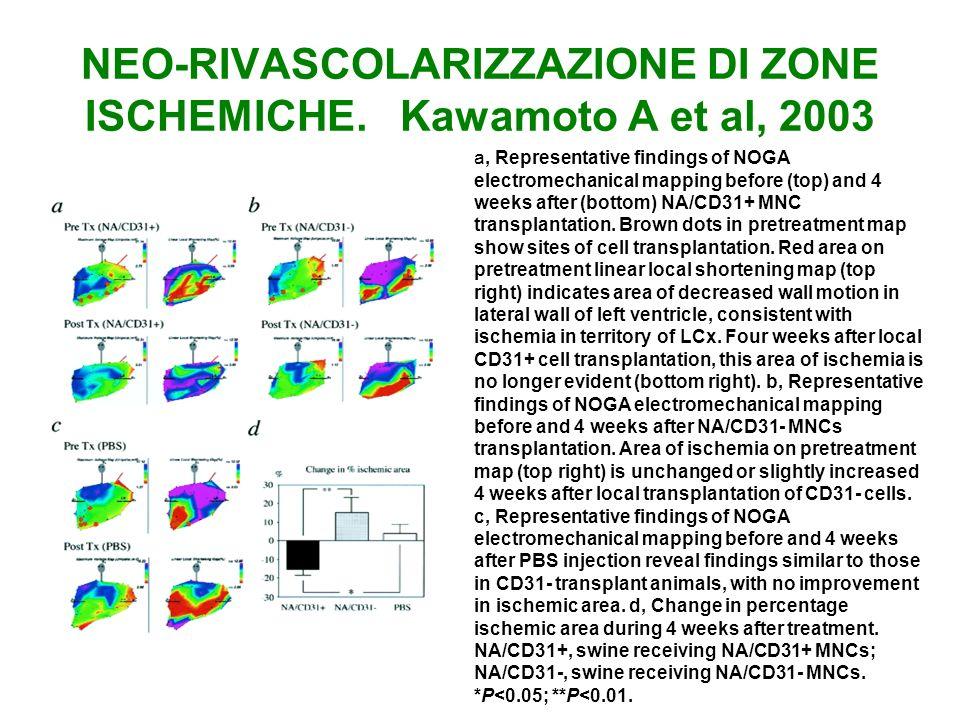 NEO-RIVASCOLARIZZAZIONE DI ZONE ISCHEMICHE. Kawamoto A et al, 2003