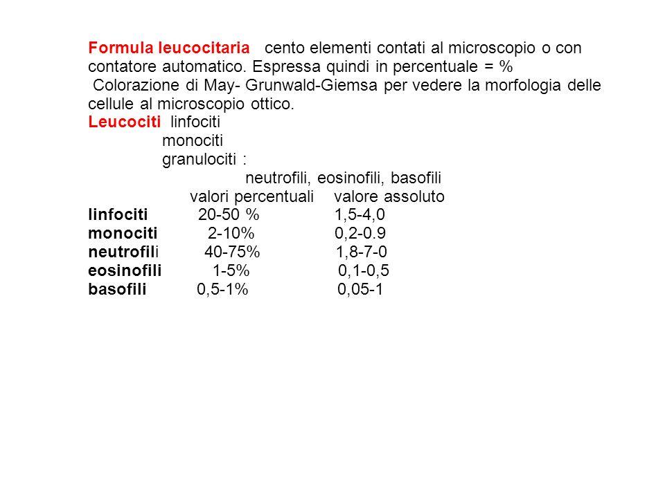 Formula leucocitaria cento elementi contati al microscopio o con contatore automatico. Espressa quindi in percentuale = %