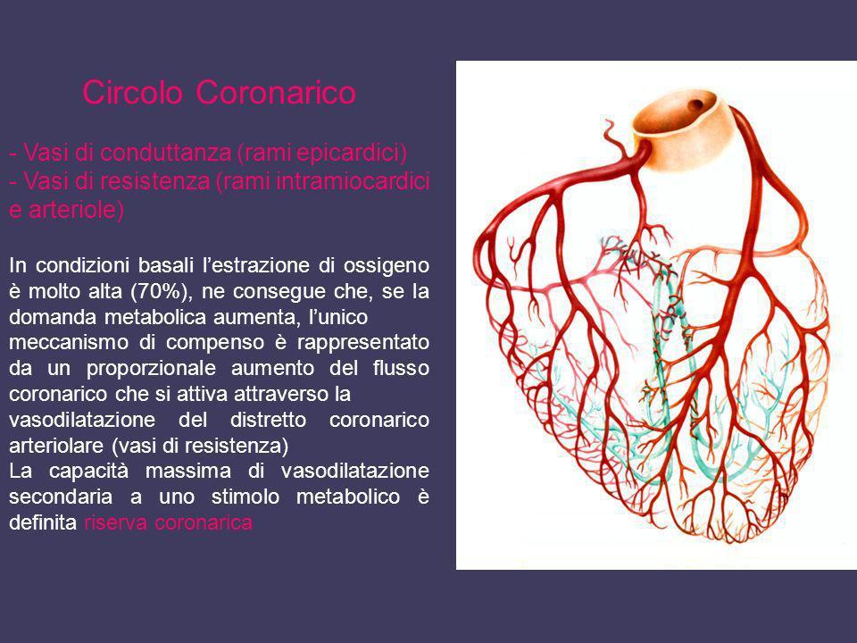 Circolo Coronarico - Vasi di conduttanza (rami epicardici)