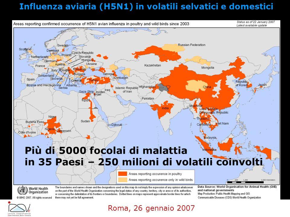 Influenza aviaria (H5N1) in volatili selvatici e domestici