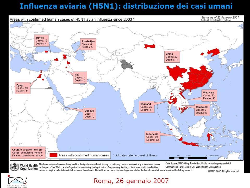 Influenza aviaria (H5N1): distribuzione dei casi umani