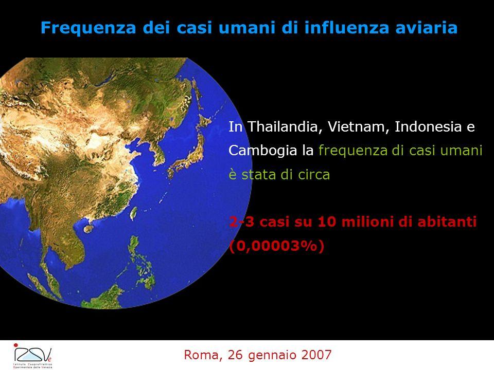 Frequenza dei casi umani di influenza aviaria