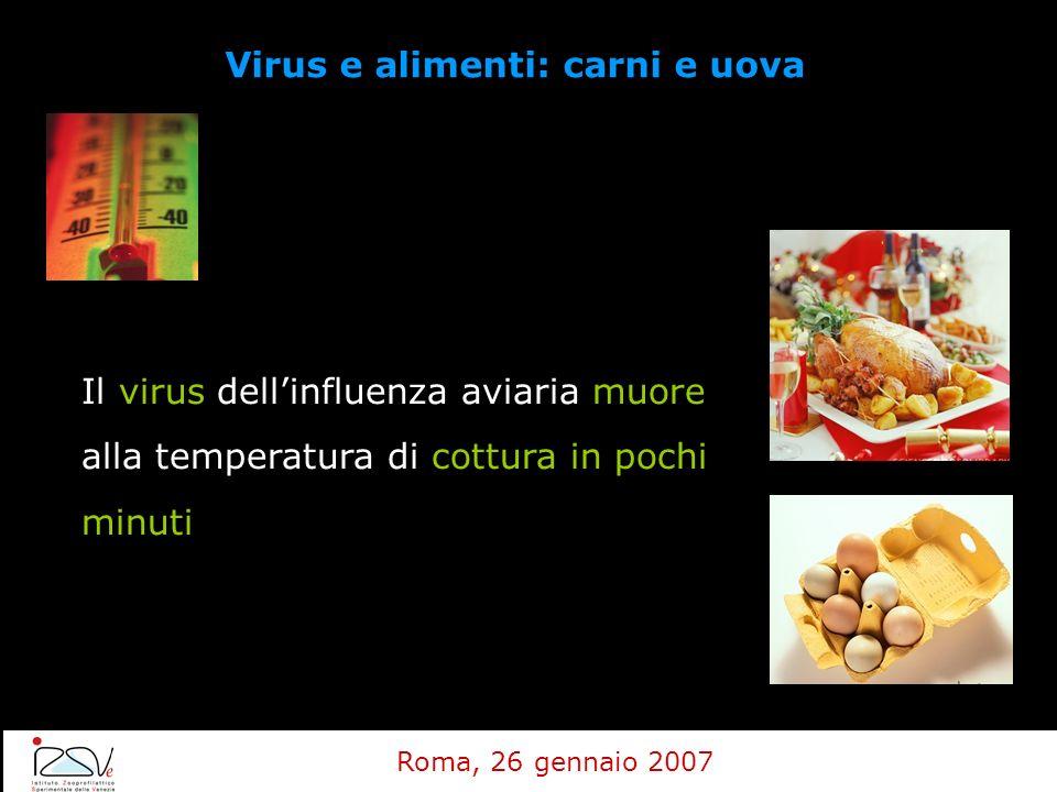 Virus e alimenti: carni e uova