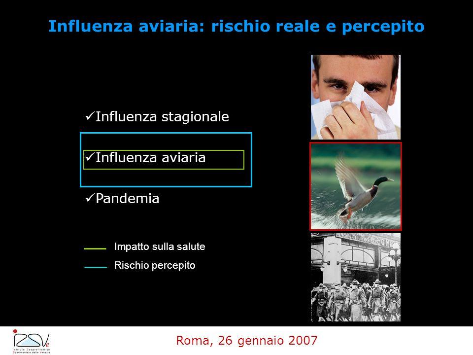 Influenza aviaria: rischio reale e percepito