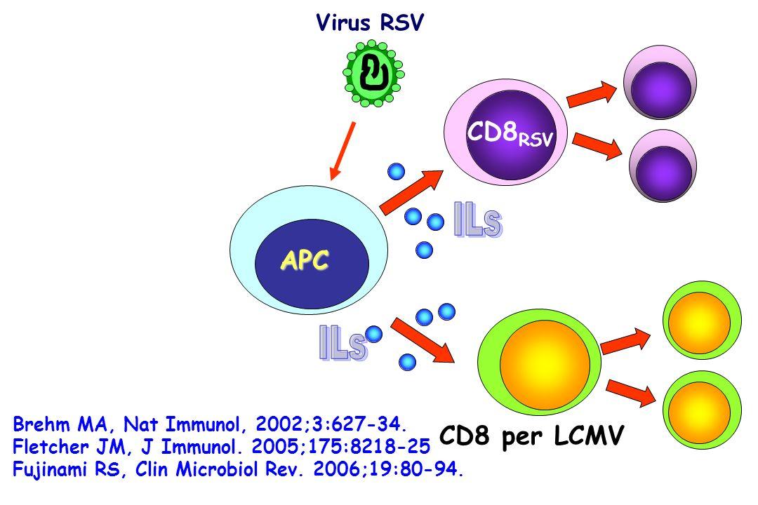 ILs ILs CD8RSV CD8RSV APC CD8 per LCMV Virus RSV