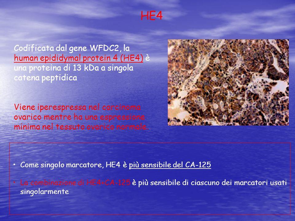 HE4 Codificata dal gene WFDC2, la human epididymal protein 4 (HE4) è una proteina di 13 kDa a singola catena peptidica.