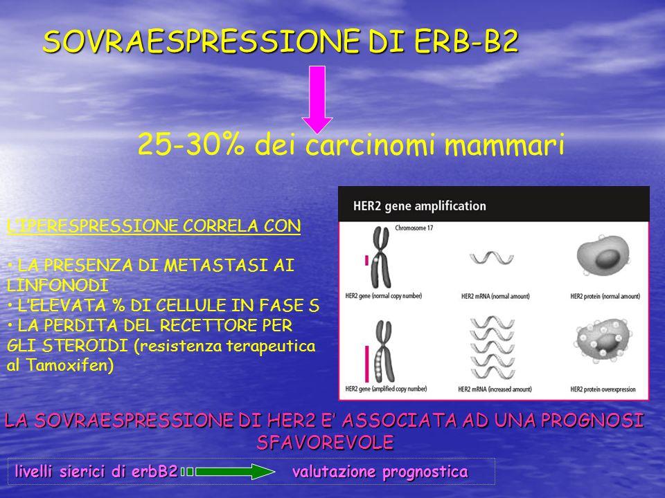 SOVRAESPRESSIONE DI ERB-B2