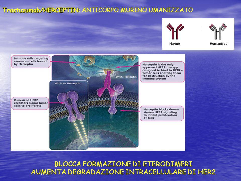 BLOCCA FORMAZIONE DI ETERODIMERI