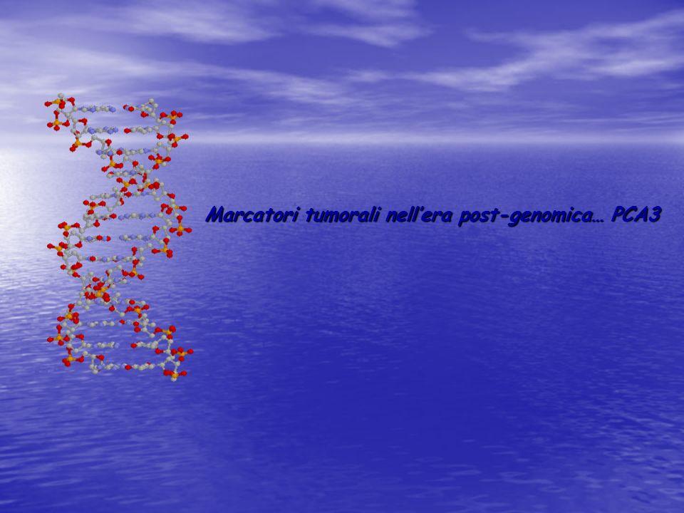 Marcatori tumorali nell'era post-genomica… PCA3