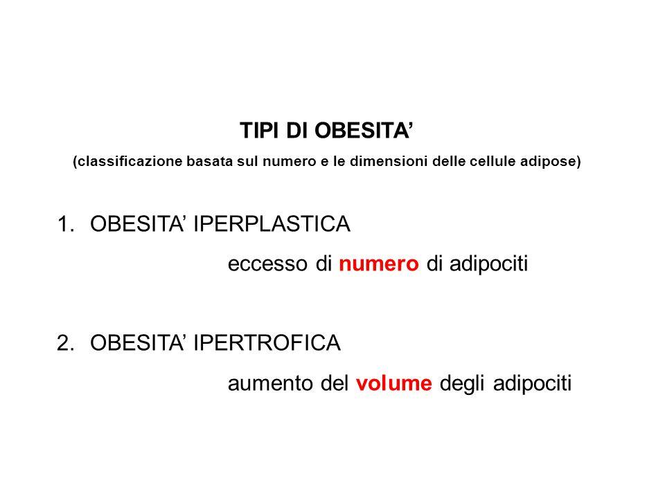 OBESITA' IPERPLASTICA eccesso di numero di adipociti