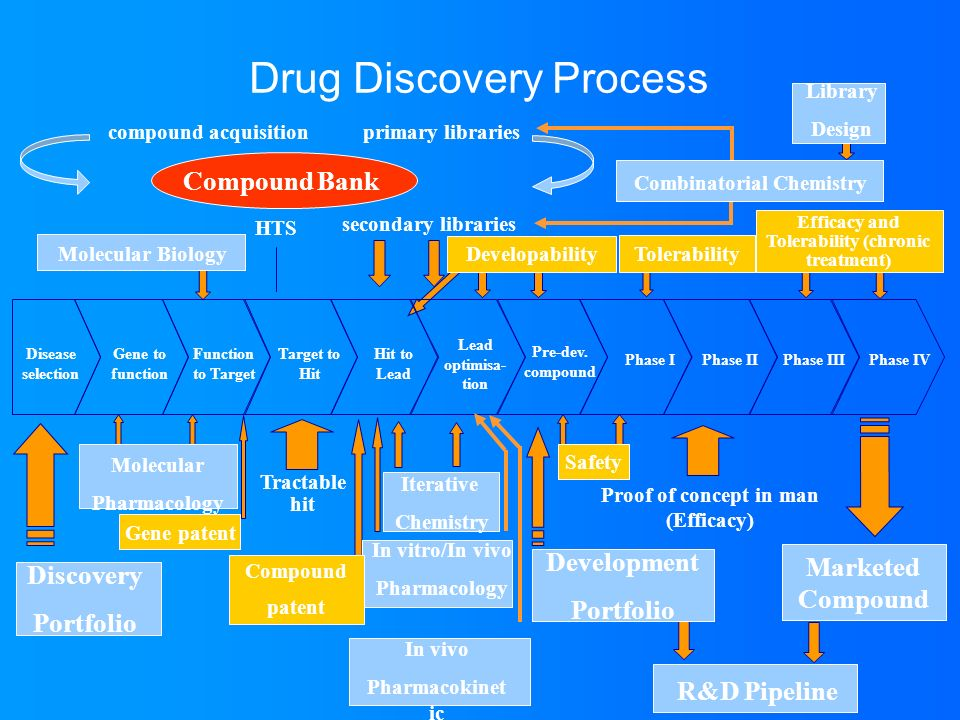 Drug Discovery Process