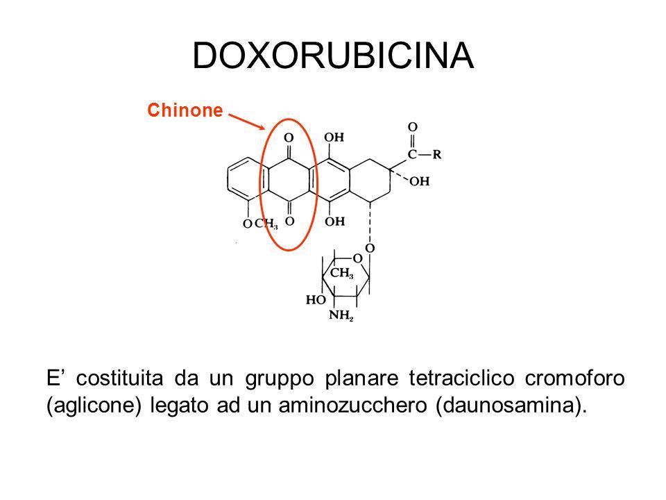 DOXORUBICINA Chinone.