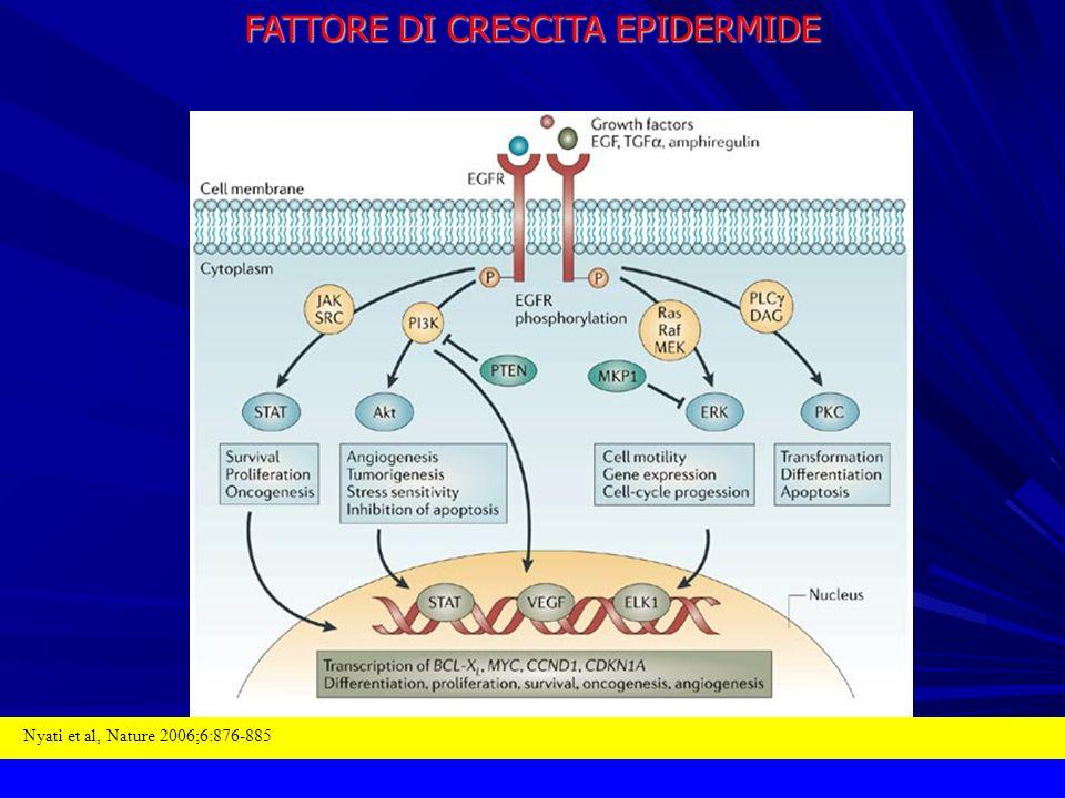 FATTORE DI CRESCITA EPIDERMIDE