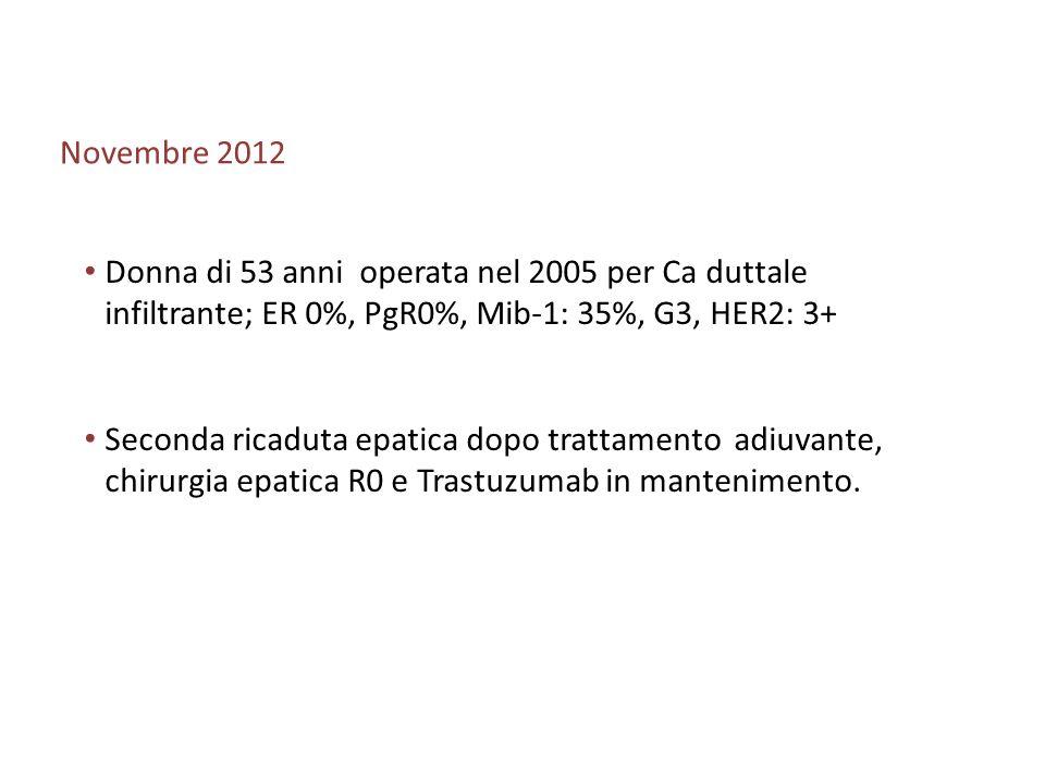 Novembre 2012 Donna di 53 anni operata nel 2005 per Ca duttale infiltrante; ER 0%, PgR0%, Mib-1: 35%, G3, HER2: 3+