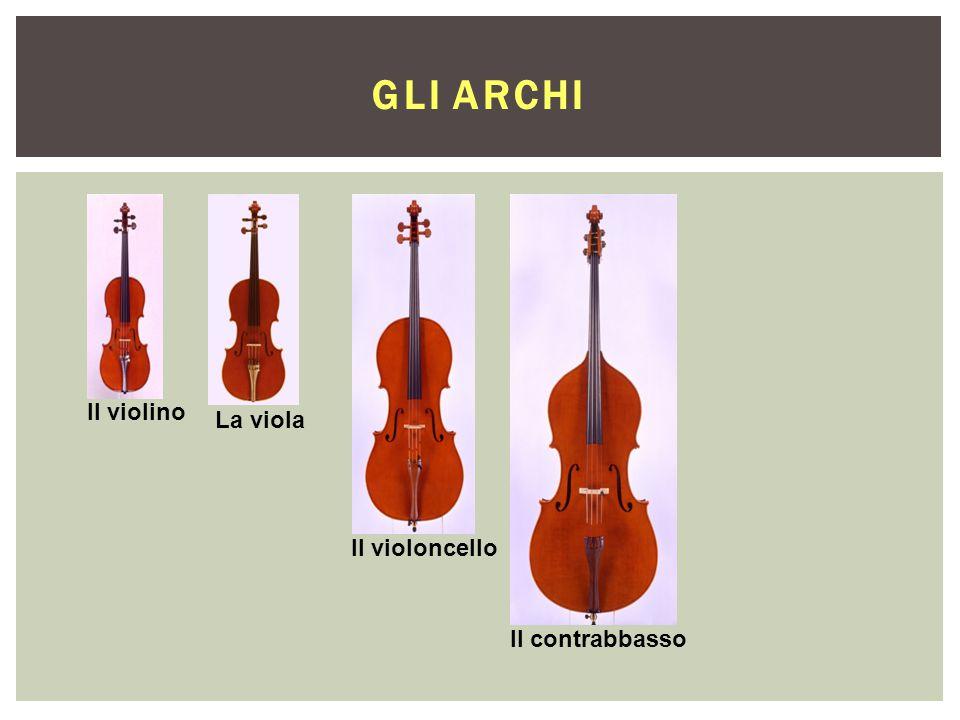 Gli Archi Il violino La viola Il violoncello Il contrabbasso