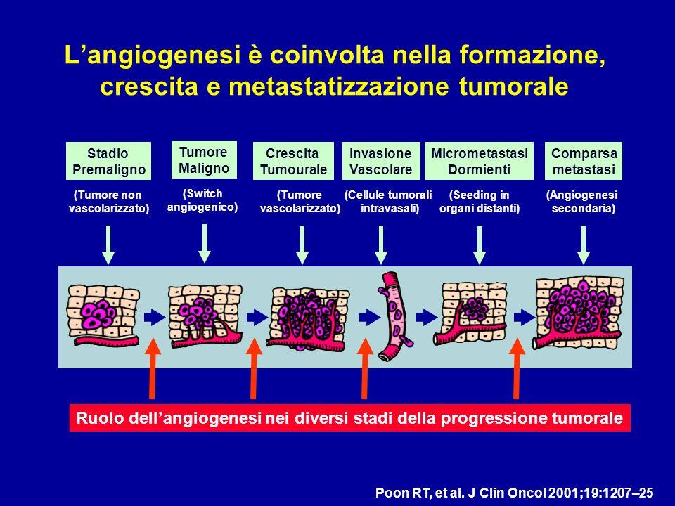 L'angiogenesi è coinvolta nella formazione, crescita e metastatizzazione tumorale
