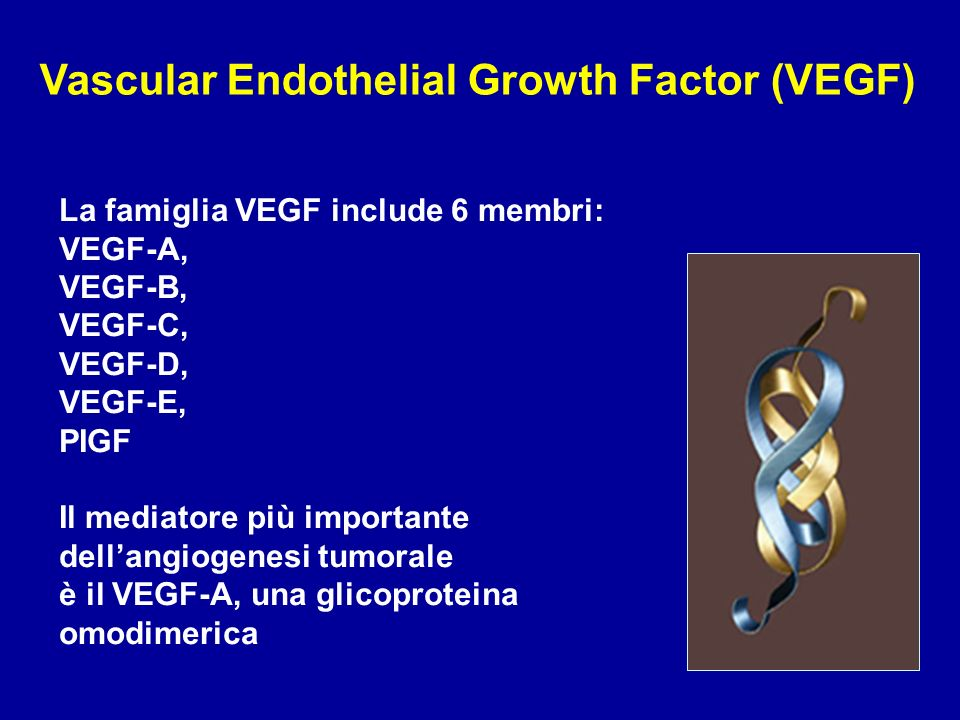 Vascular Endothelial Growth Factor (VEGF)
