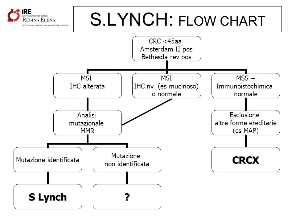S.LYNCH: FLOW CHART