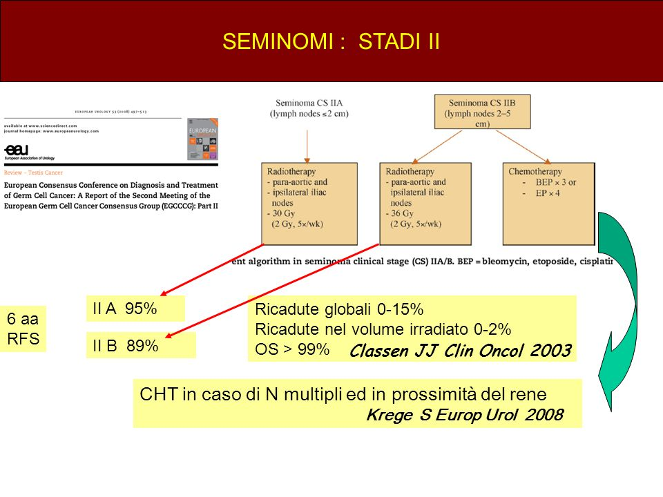 SEMINOMI : STADI IICHT in caso di N multipli ed in prossimità del rene. Krege S Europ Urol 2008.