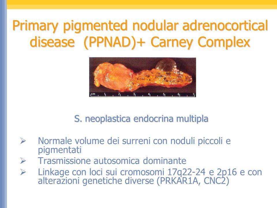 S. neoplastica endocrina multipla