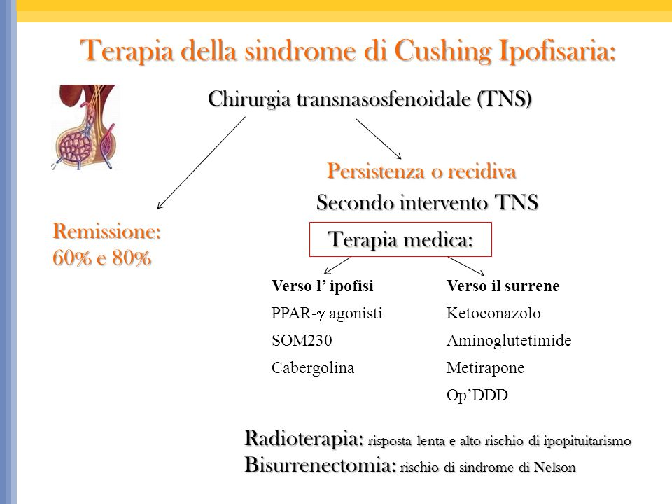Terapia della sindrome di Cushing Ipofisaria: