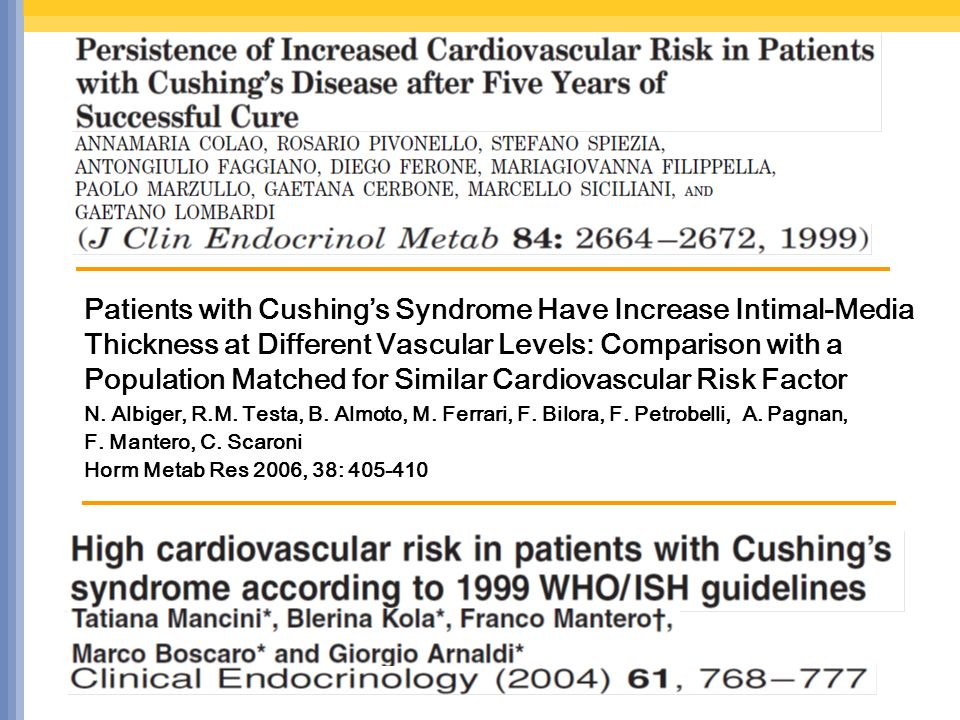 Patients with Cushing's Syndrome Have Increase Intimal-Media Thickness at Different Vascular Levels: Comparison with a Population Matched for Similar Cardiovascular Risk Factor