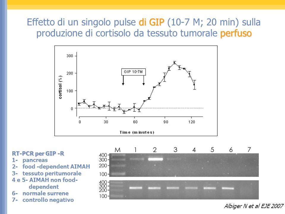 Effetto di un singolo pulse di GIP (10-7 M; 20 min) sulla produzione di cortisolo da tessuto tumorale perfuso