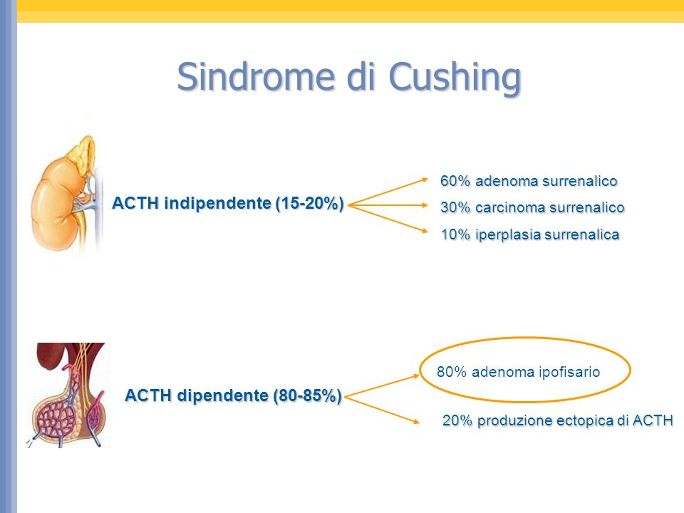 Sindrome di Cushing ACTH indipendente (15-20%)