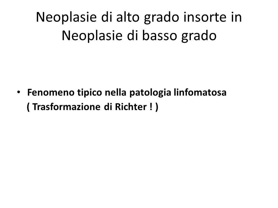 Neoplasie di alto grado insorte in Neoplasie di basso grado
